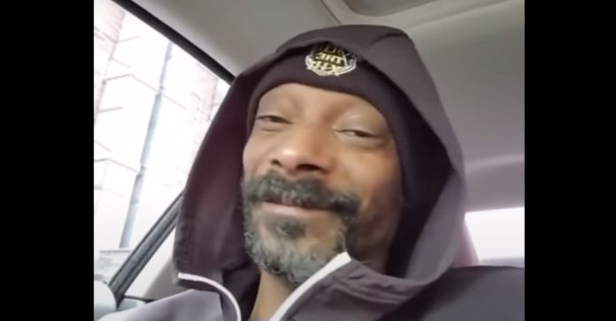 Snoop Dogg Frozen